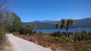 Lake Te Anau II