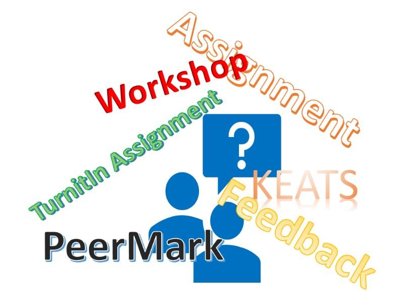 PeerMark Header