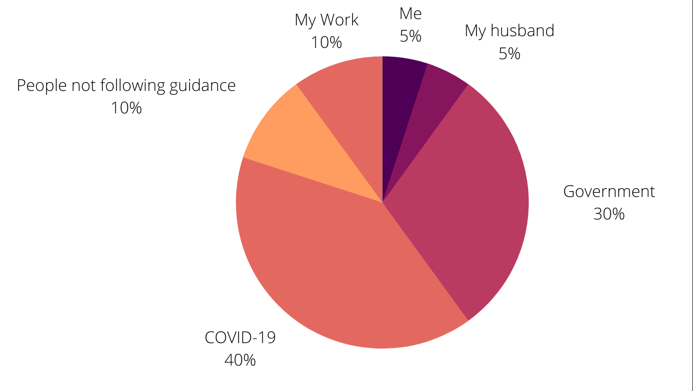 pie chart of my responsibilities: me 5 percent, my husband 5 percent, governtment 30 percent, covid-19 40 percent, people not following guidance 10 percent, my work 10 percent.