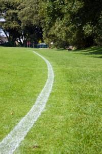 white-boundary-line