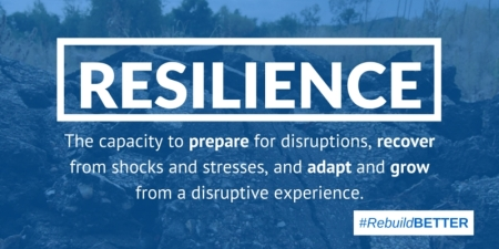 Resilience2 450 225