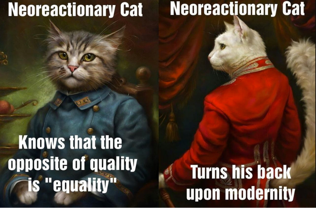 The Neoreactionary Cat memes © https://theflemishfrontier.tumblr.com/post/115125305476/oh-neoreactionary-cat-3