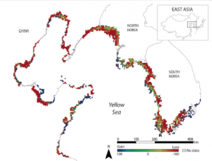 Figure 1. Distribution, with evaluated gains and losses, of the Yellow Sea tidal flat ecosystem [1]
