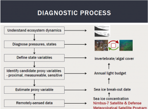 Figure 2. Diagnostic process and assessment outcome for the Antarctic invertebrate ecosystem [1].