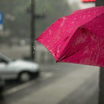 Pink umbrella in the rain