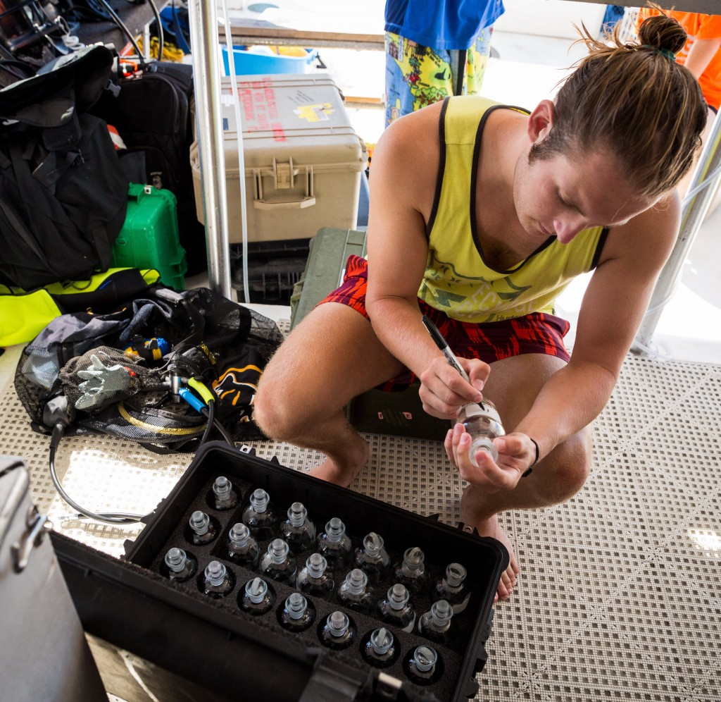Nathan preparing sample bottles in the Dry Tortugas. (Photo Credit to Benjamin Drummond)